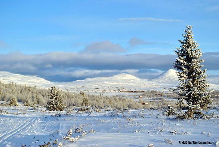 La neige en Norvège chez Bio'Om