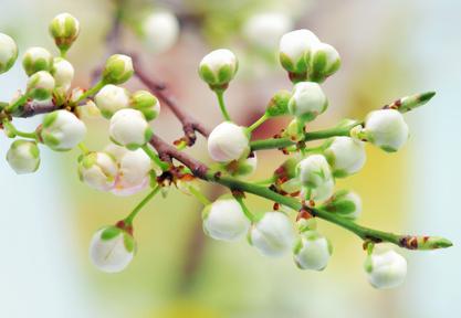 Préparer sa peau au soleil dès l'arrivée du printemps