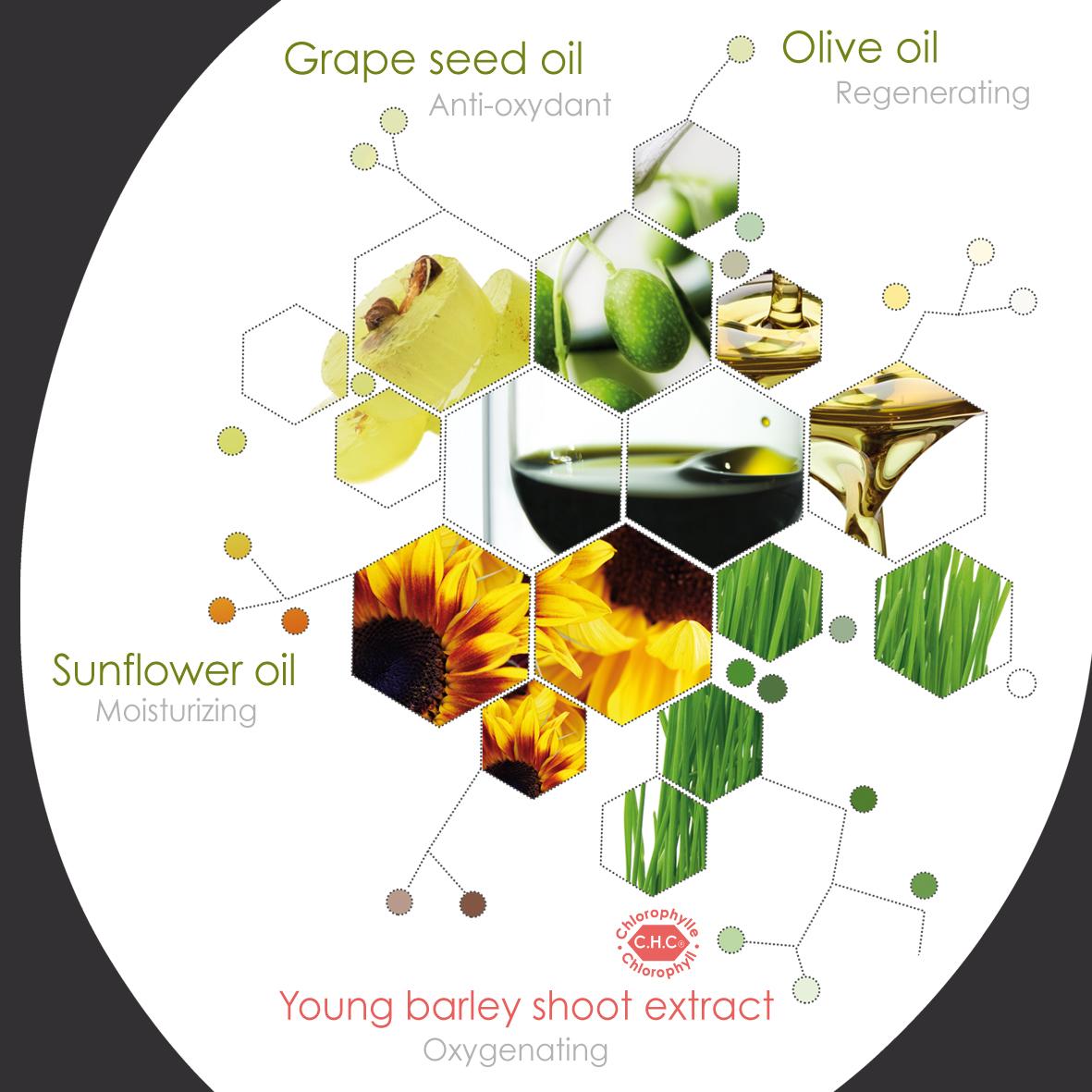 Alorée, complexe innovant à la chlorophylle active