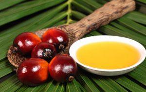 oolution soin bio sans huile de palme