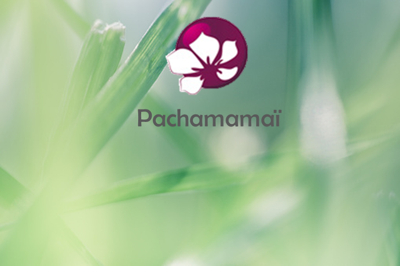 Pachamamaï, le royaume des cosmétiques solides